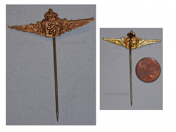 Belgium ww2 air force wings veterans pin military medal for Air force decoration writing