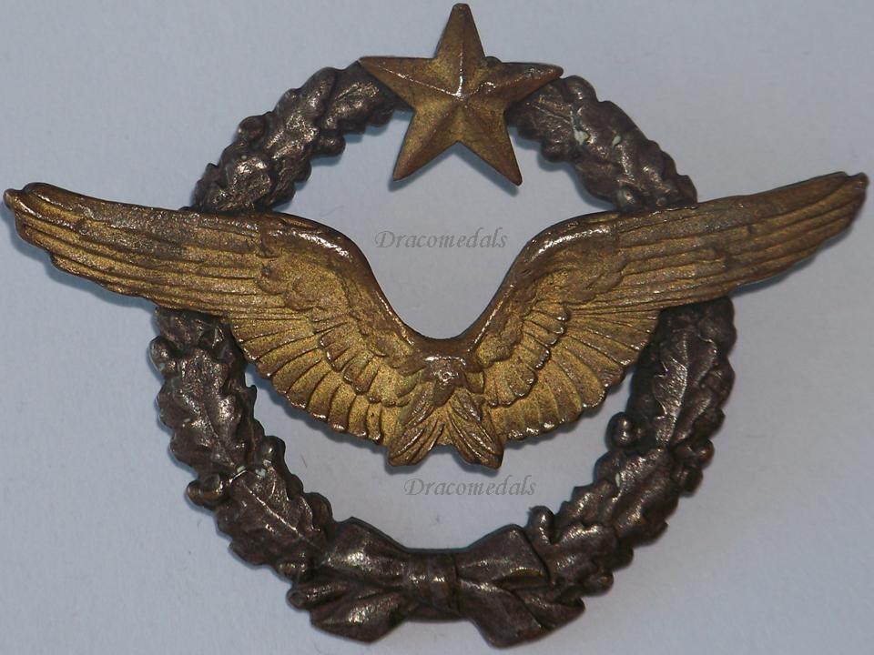 Préférence France WW2 Pilot Wings badge Air Force French Military Aviation  EL91